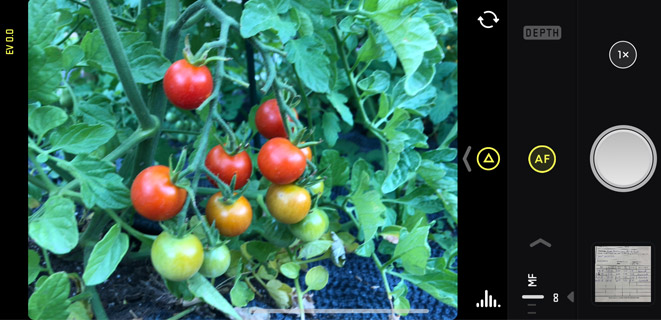 Halide camera apps for iPhone