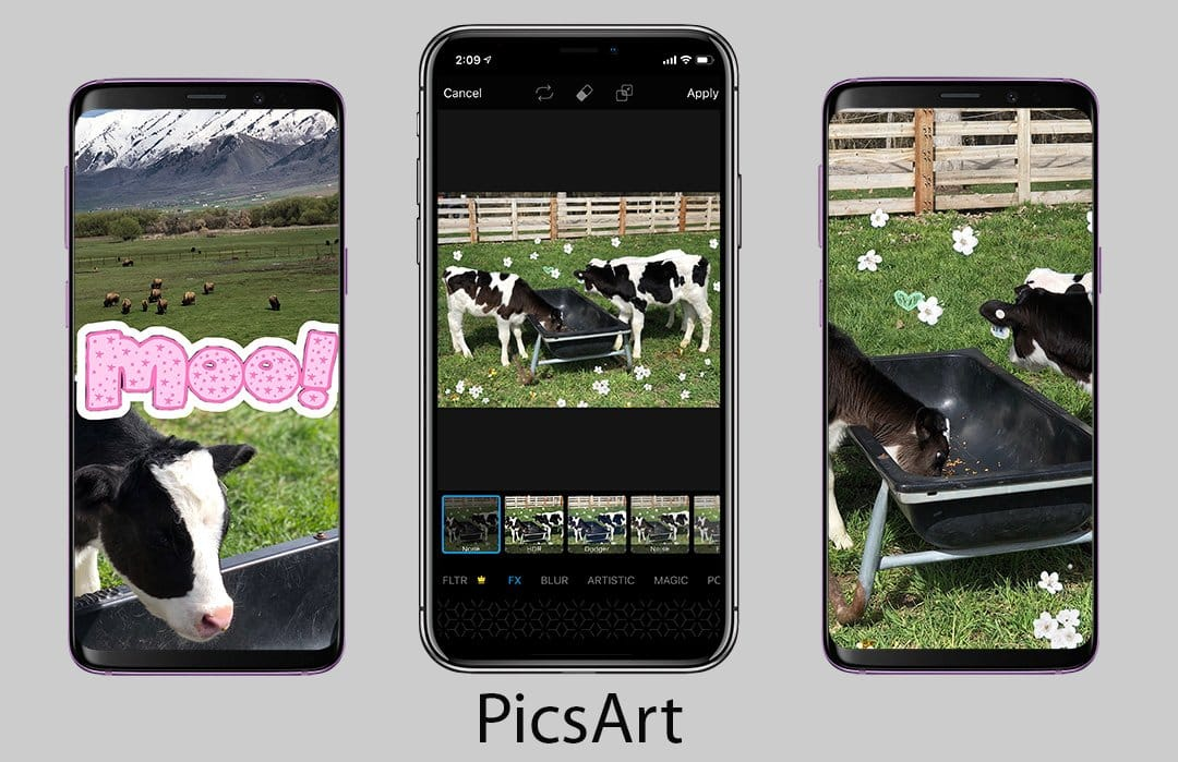 Best Photo Editing Apps for iPhone and Android (2019) | PicxTrix