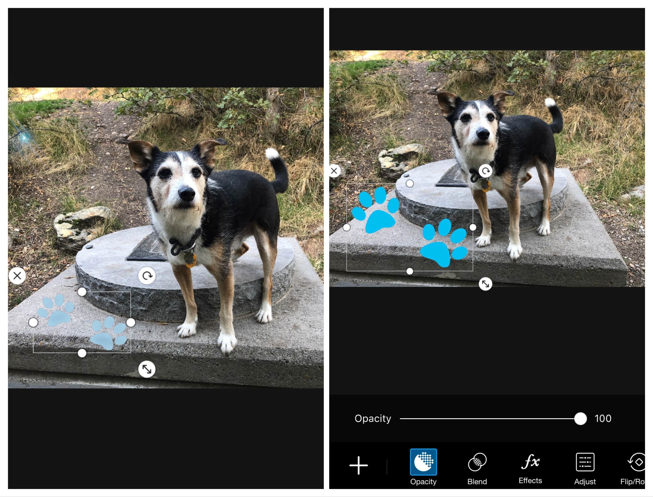 Sticker PicsArt Editing App