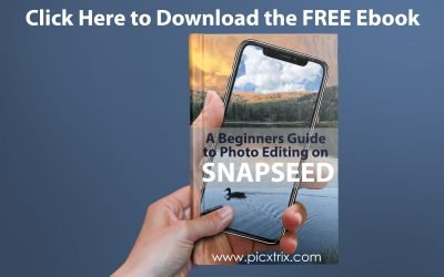 Free Ebook- A Beginners Guide to Photo Editing With Snapseed